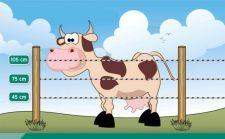 Garduri electrice vaci