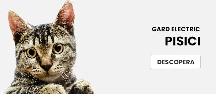 Gard electric pisici
